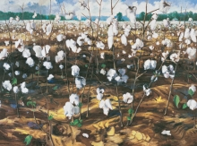 North Carolina artist J. Chris Wilson's Landscape Painting <em>Cotton Field, Cool Spring</em> see also &quot;From Murphy to Manteo--An Artist's Scenic Journey&quot;