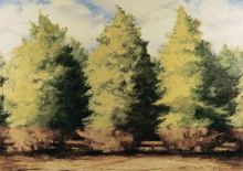 North Carolina artist J. Chris Wilson's Landscape Painting <em>Floodline on Cedars</em> see also &quot;From Murphy to Manteo--An Artist's Scenic Journey&quot;