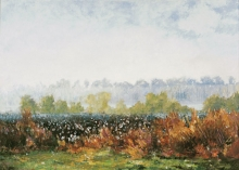 North Carolina artist J. Chris Wilson's Landscape Painting <em>Cotton Field, Early Morning</em> see also &quot;From Murphy to Manteo--An Artist's Scenic Journey&quot;