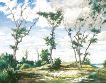 North Carolina artist J. Chris Wilson's Landscape Painting <em>Dunekeepers at Emerald Isle</em> see also &quot;From Murphy to Manteo--An Artist's Scenic Journey&quot;