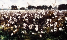 North Carolina artist J. Chris Wilson's Landscape Painting <em>Cottonsong at Cool Spring</em> see also &quot;From Murphy to Manteo--An Artist's Scenic Journey&quot;