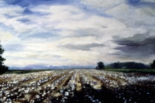 North Carolina artist J. Chris Wilson's Landscape Painting <em>Cotton Field with Clouds</em> see also &quot;From Murphy to Manteo--An Artist's Scenic Journey&quot;
