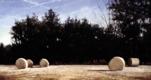 North Carolina artist J. Chris Wilson's Landscape Painting <em>Haybales</em> see also &quot;From Murphy to Manteo--An Artist's Scenic Journey&quot;