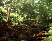North Carolina artist J. Chris Wilson's Landscape Painting <em>Toisnot</em> see also &quot;From Murphy to Manteo--An Artist's Scenic Journey&quot;